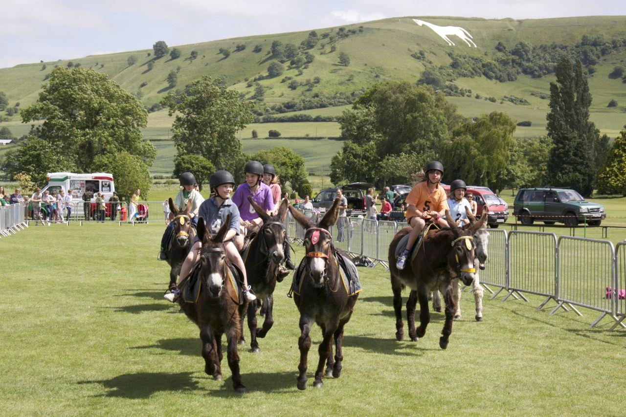Donkey Derby Sunday 30th June 2013 Westbury Lions Club