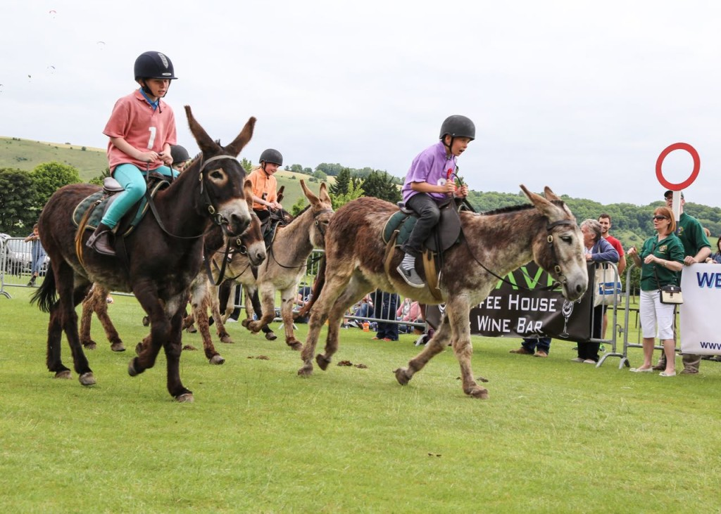 Donkey Derby – 14th June 2015