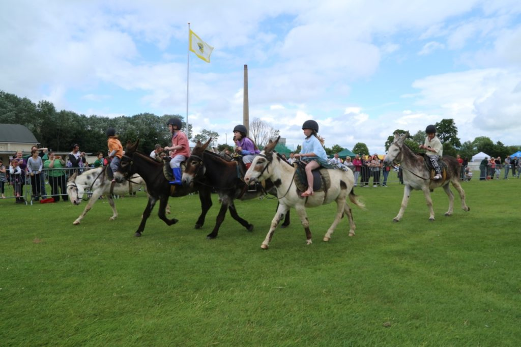Donkey Derby – 12th June 2016 – Report