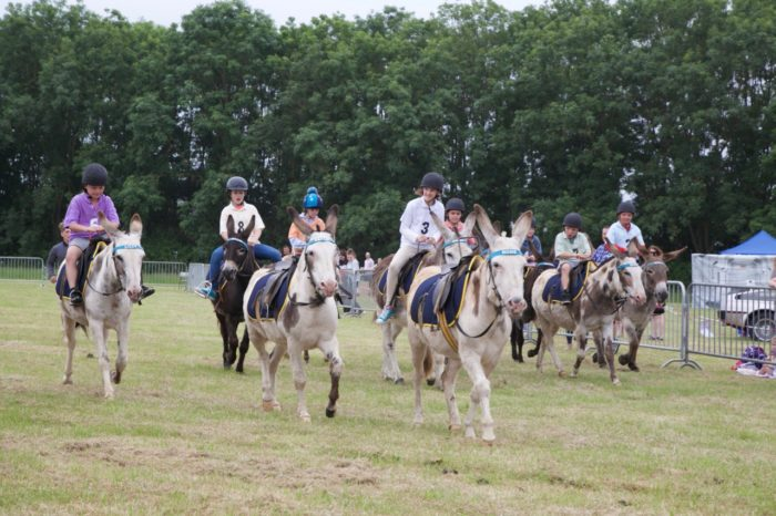 Donkey Derby raises £4k for local causes